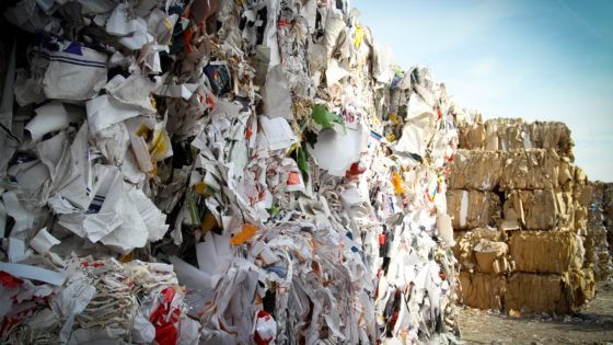 site containing paper waste