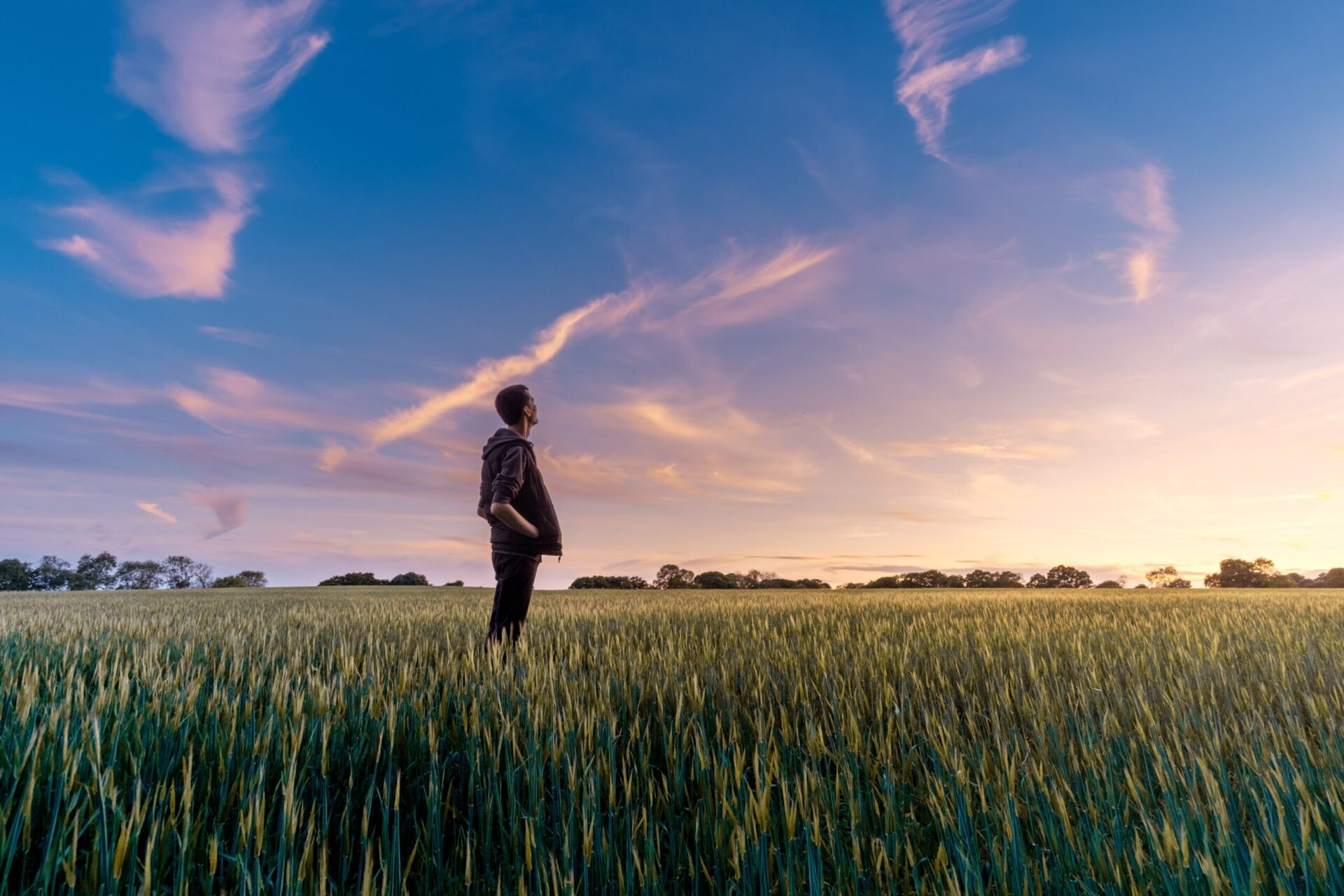 What does the future hold for food?